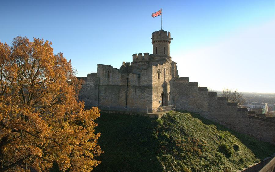 Lincoln-Castle-Tree